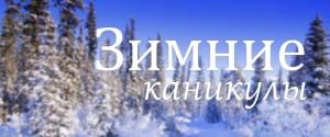 зимн каникулы